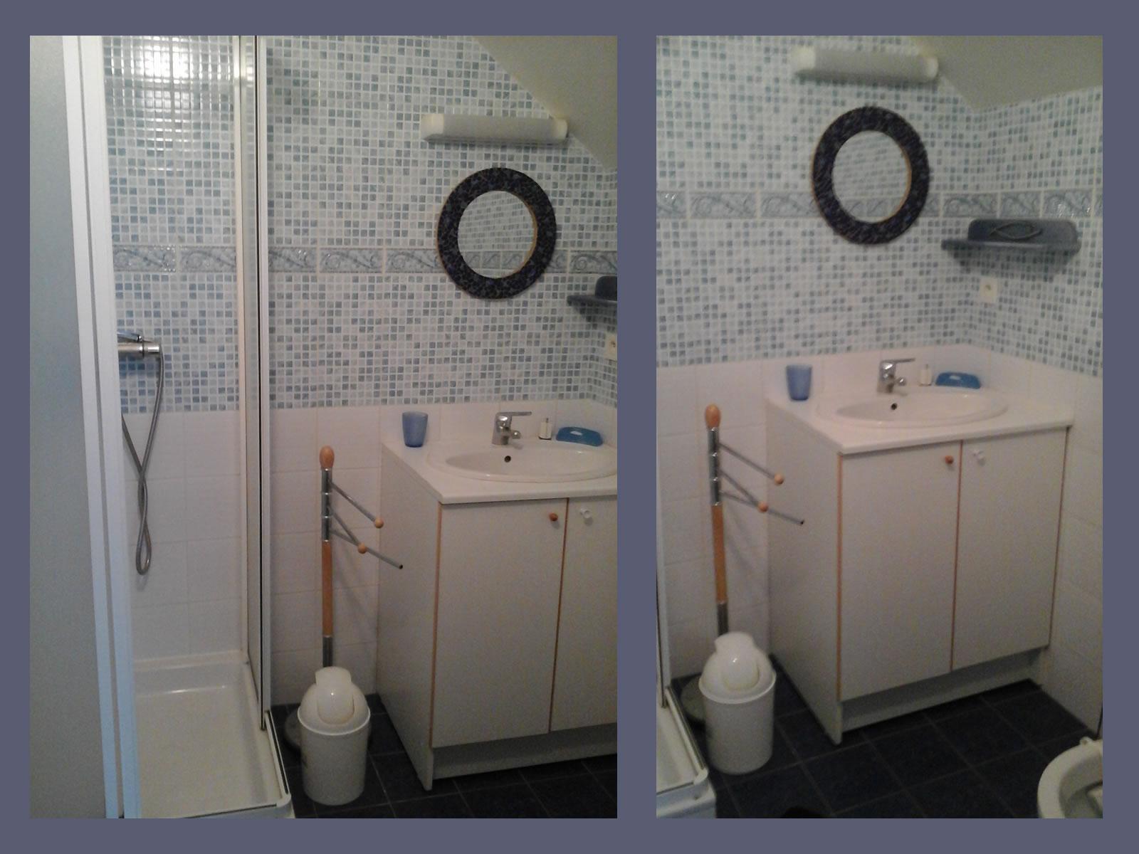 Image n°7 du gîte de mer : La salle de bain du gite